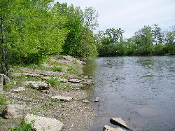 riverfront riverbank thumb.jpg